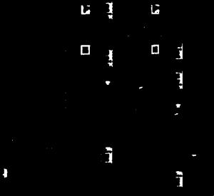 WH7535-004